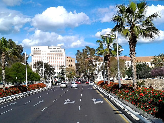Promenade en ville (6)