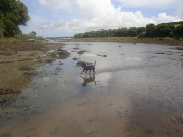 Promenade sur l'eau