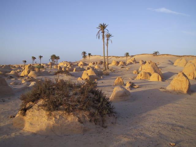 Pyramides tunisienne (2)