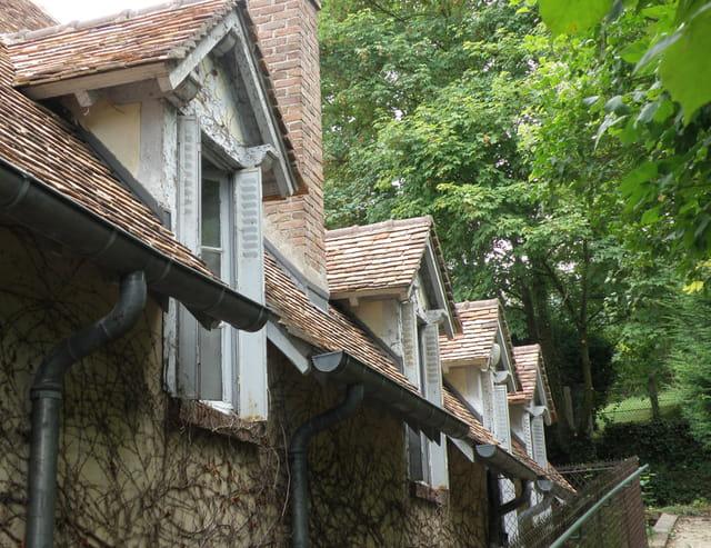 Quatre fenêtres rangées donnant sur la forêt