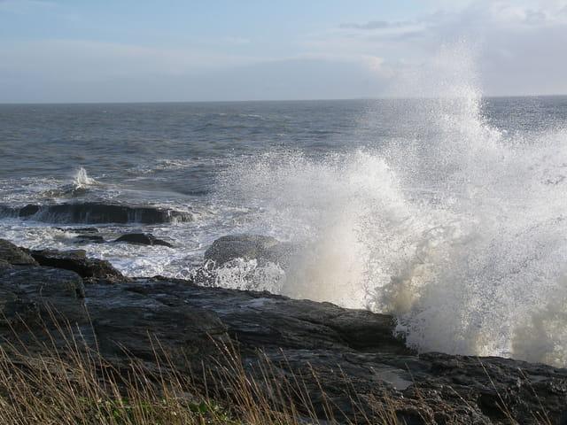 Que sommes-nous face à l'océan ?