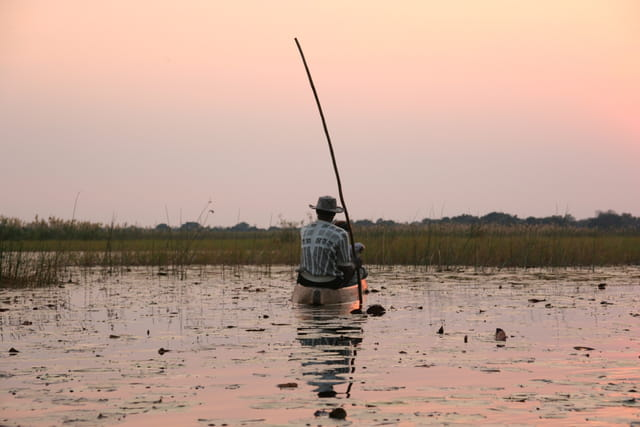 Quiétude sur l'okavango