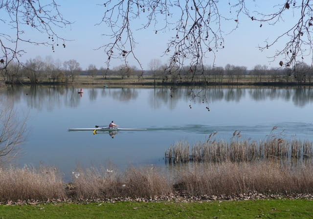 Rameur sur la Saône