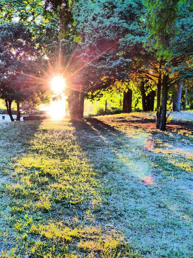 Rayon de soleil au Bois de Vincennes