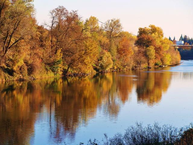 reflet d'automne sur le fleuve