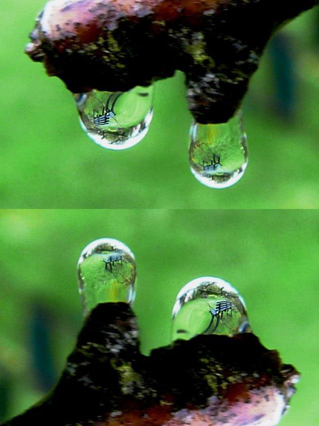 Reflet du banc dans les gouttes d'eau