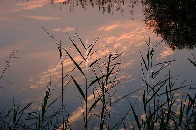 Reflet du ciel