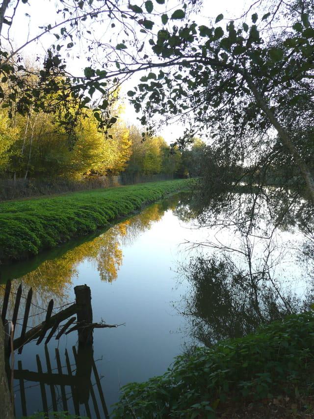 Reflets d'automne lagune