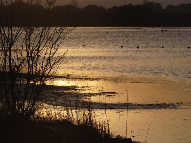 Reflets d'un coucher de soleil (Juliane)