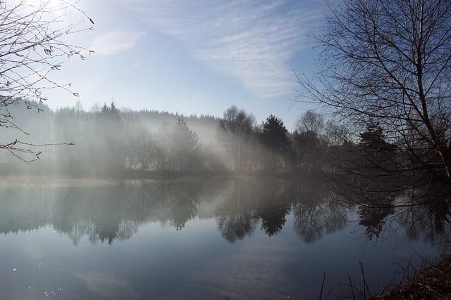 Reflets dans la brume matinale