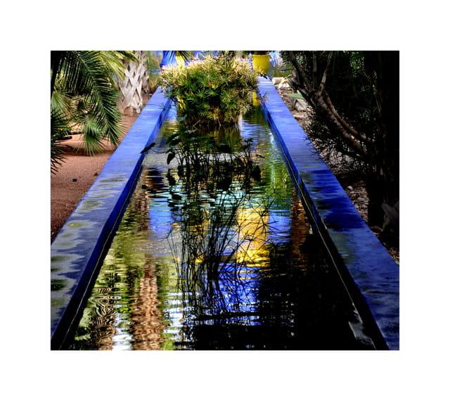 reflets dans les jardins de Jacques Majorelle