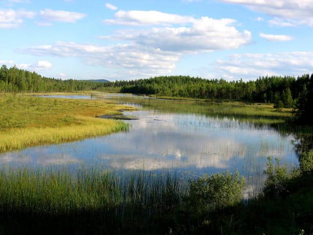 Reflets dans un lac suédois