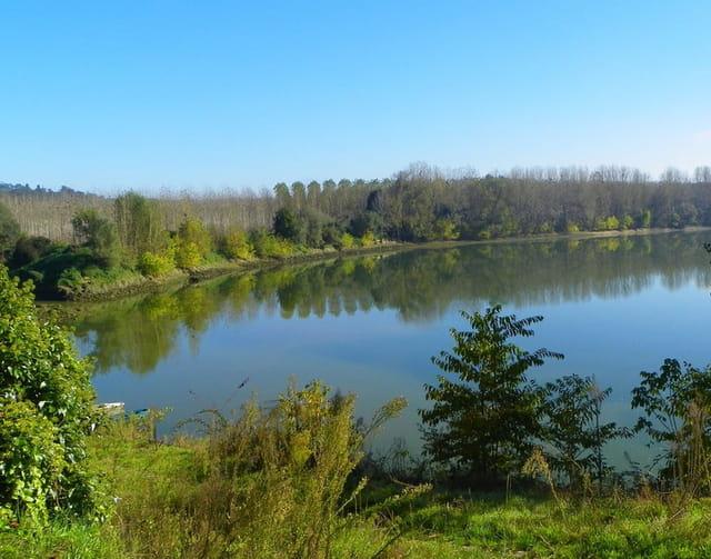 reflets en Garonne