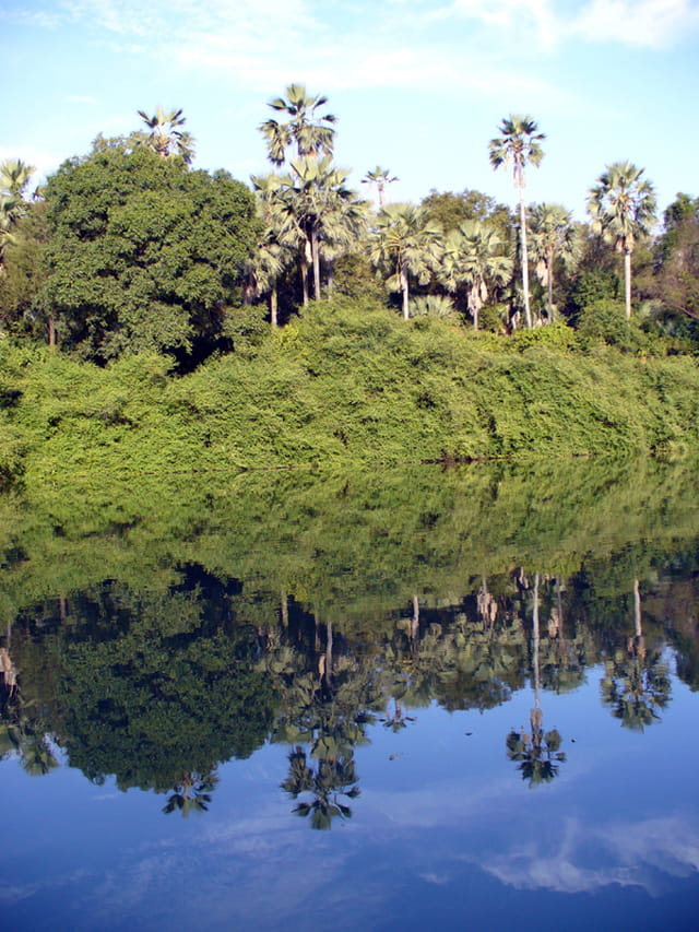 Reflets sur la Gambie