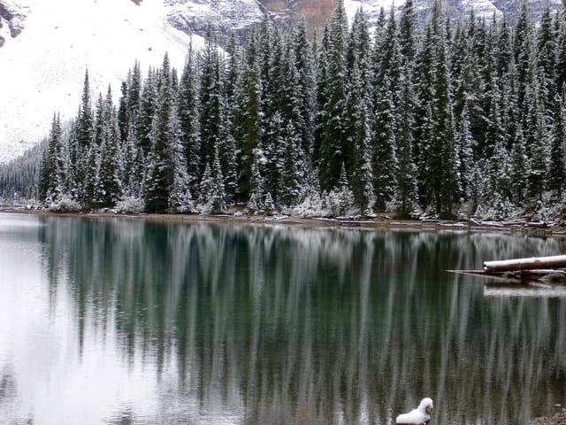 Reflets sur le lac moraine