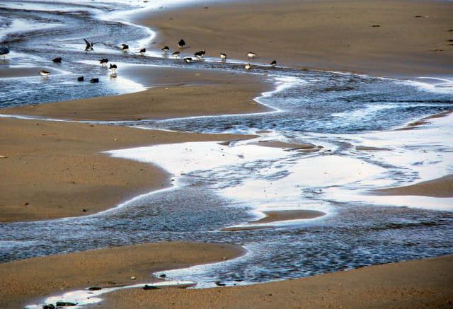 Reflets sur le sable