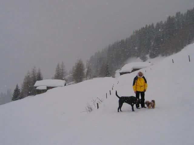 Rencontre dans le blizzard