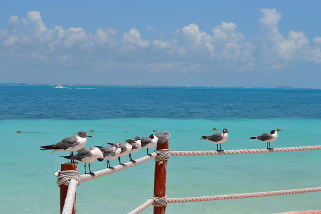 repos à Cancun