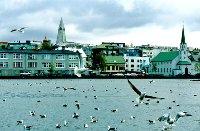 Reykjavik vue du lac tjörnin.