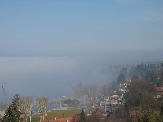 Rives dans la brume