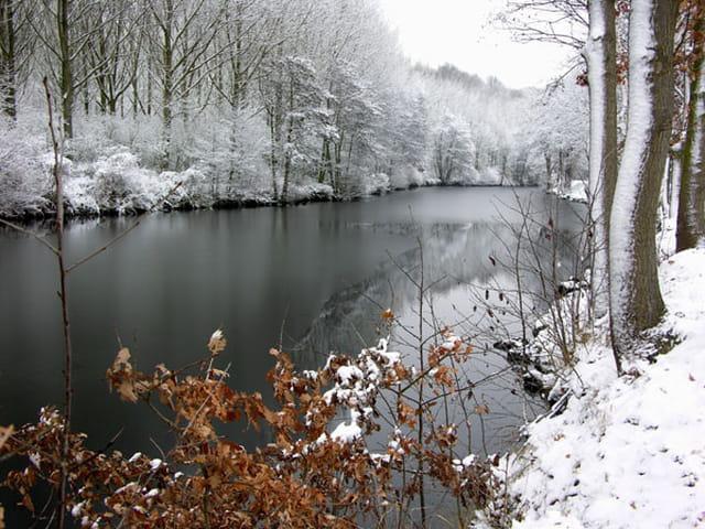 Rives hivernales