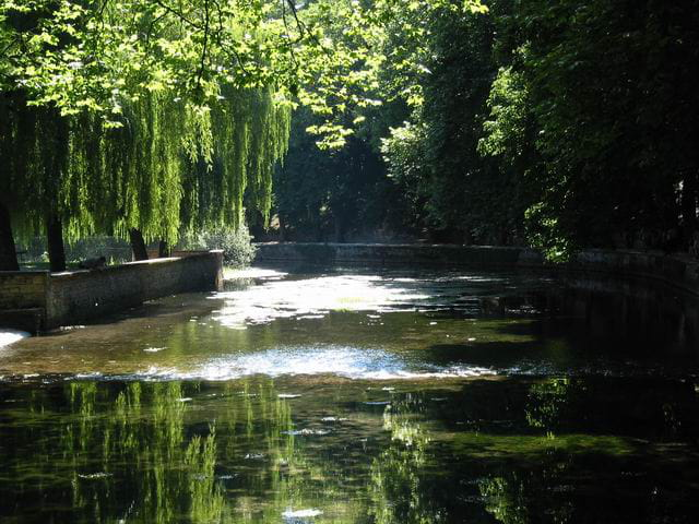 Rivière d'été