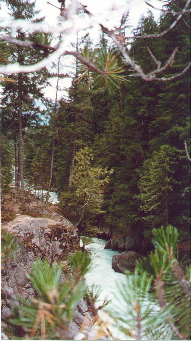 Rivière de Pemberton