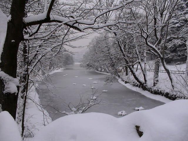 Rivière engourdie