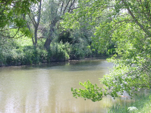 Rivière paisible