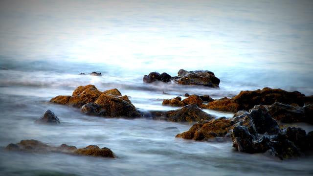 Rochers dans les vagues