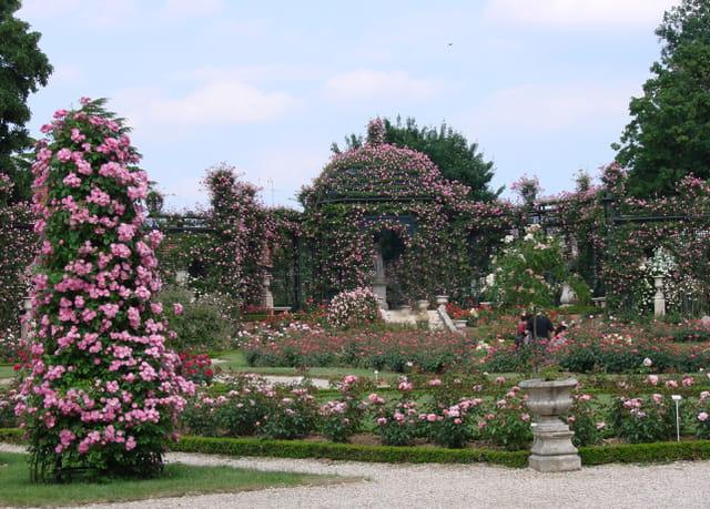 Roseraie de l 39 hay les roses par nadine cezard sur l 39 internaute for Garage renault l hay les roses