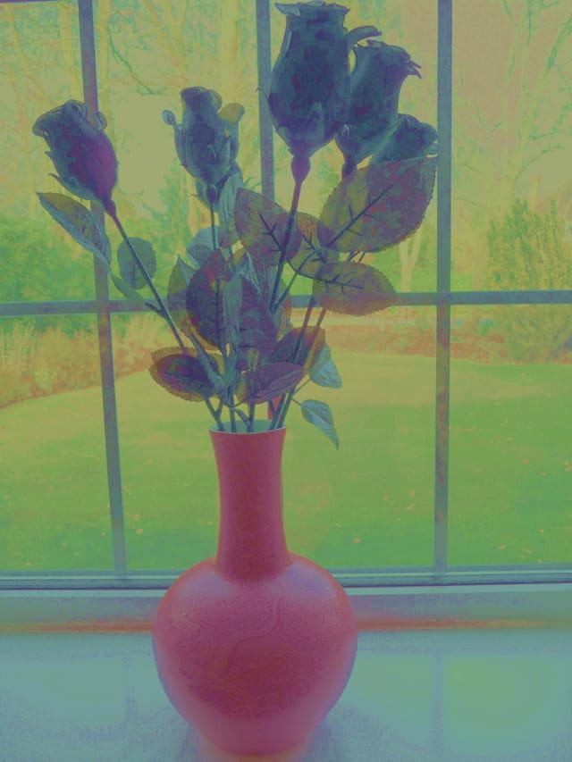 Roses à la Van Gogh