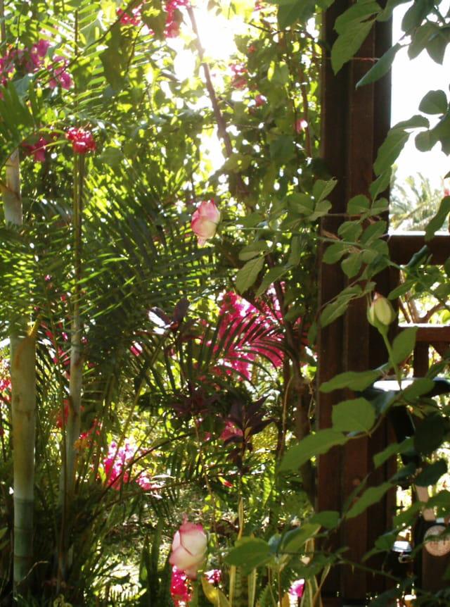 roses et verts tendres