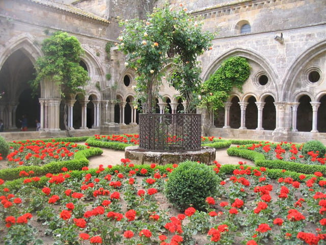 Roses rouges à l'abbaye de fontfroi