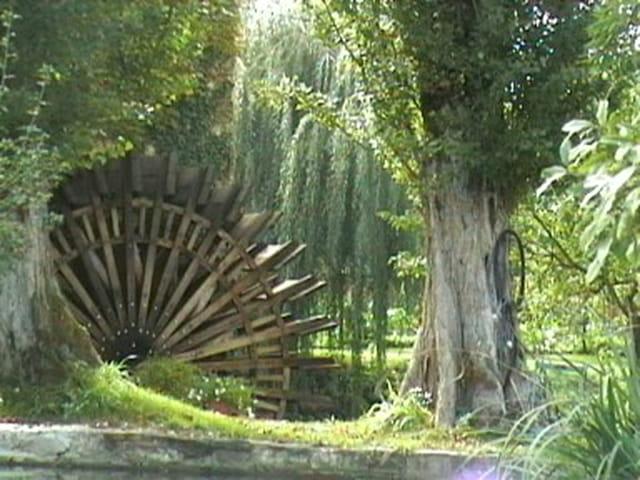 Roue du Moulin de Cocussotte