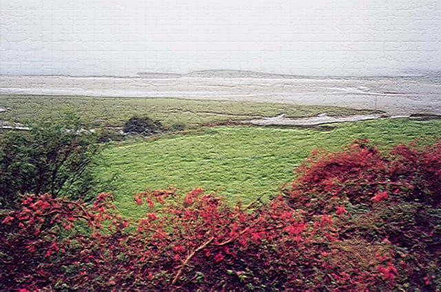 Rouge connemara