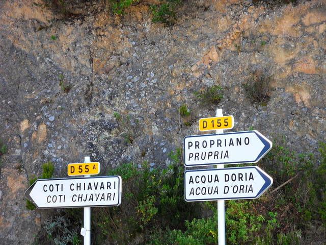 Route entre Ajaccio et Propriano (0)