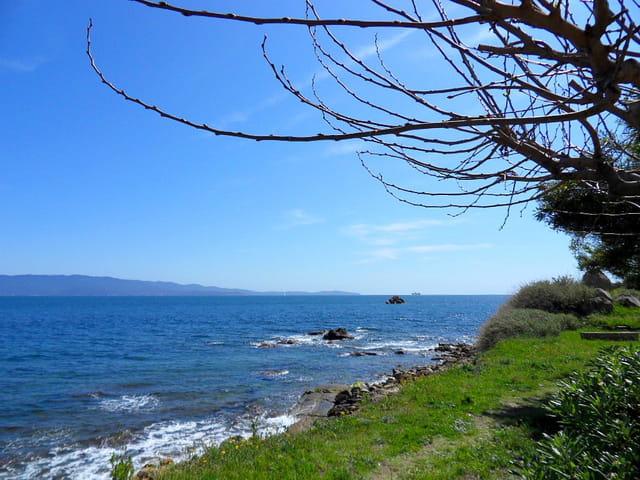 Route entre Parata et Ajaccio (6)