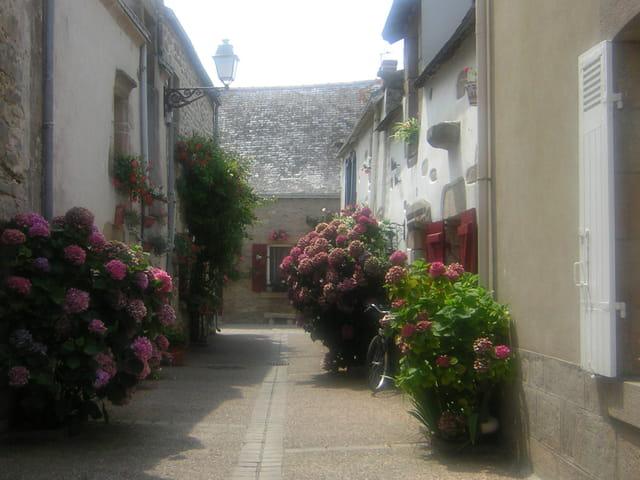 Rue aux hortensias