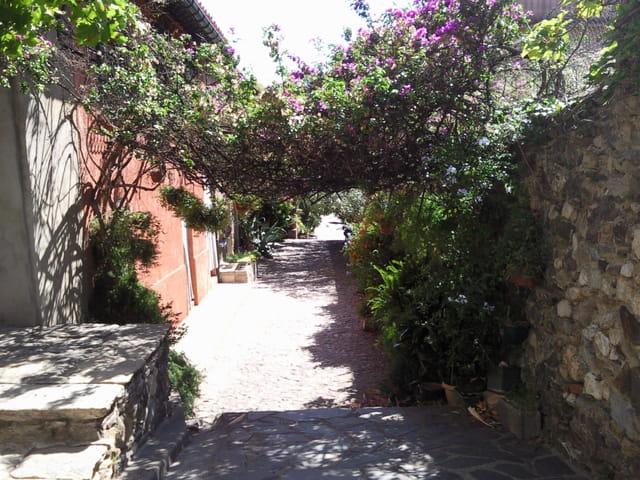 Ruelle de Collioure