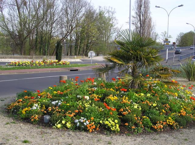 Rues alpicoises fleuries