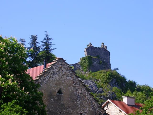 Ruine du chateau de chaumont