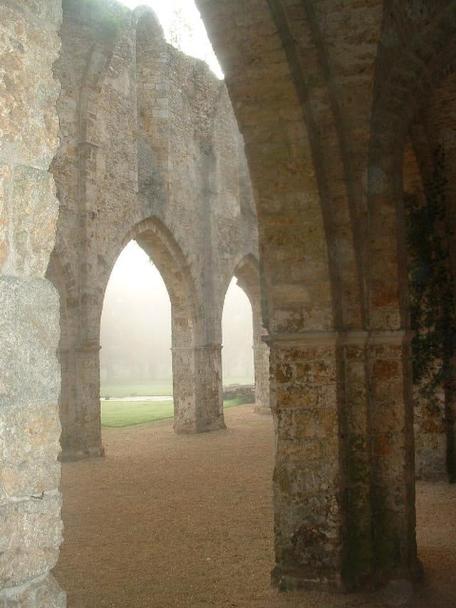 Ruines de l ' Abbaye de cernay
