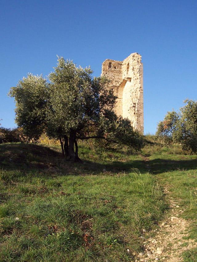 Ruines de l'ancienne cathédrale de Manosque