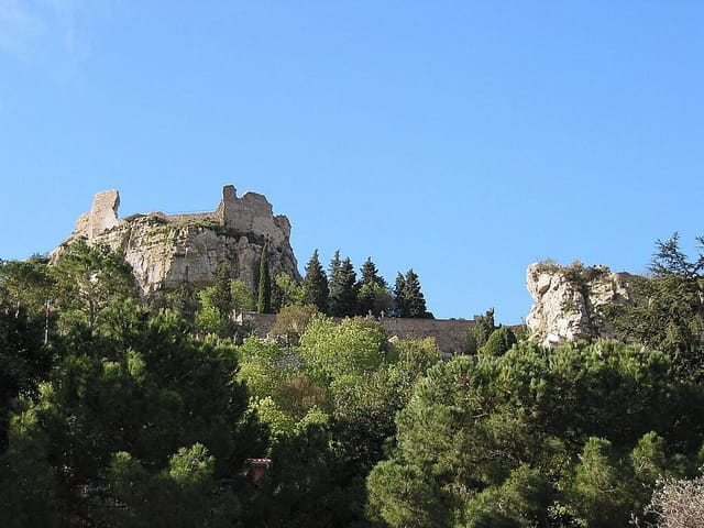 Ruines du fort