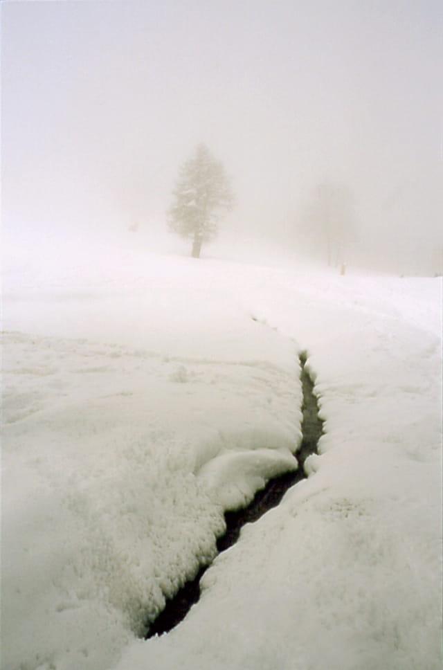 Ruisseau dans la neige