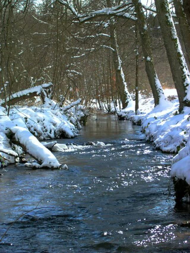 Ruisseau enneigé
