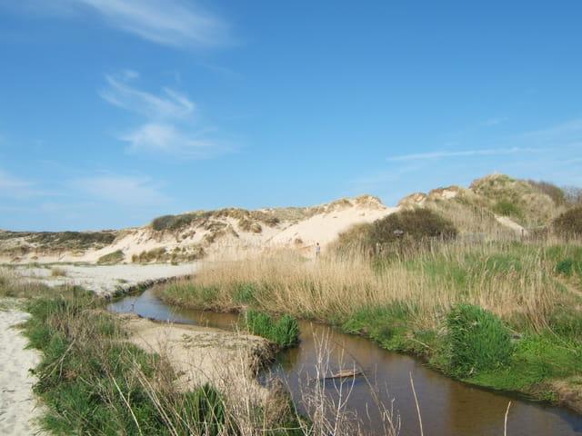 Ruisseau la La becque