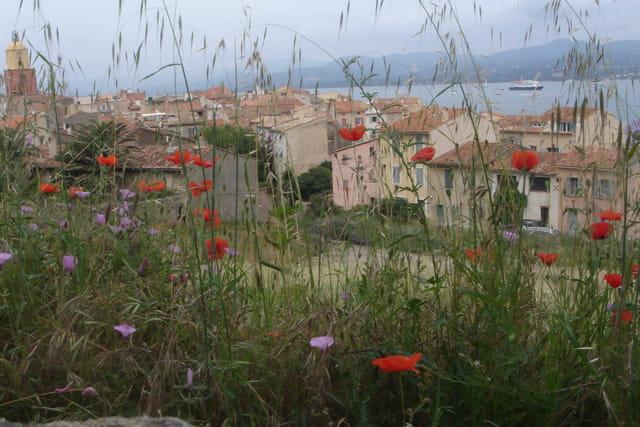 Saint-Tropez vue de la citadelle