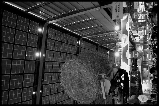 Salon de l'agriculture 3